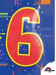 #6 Multi-Color frontside mylar